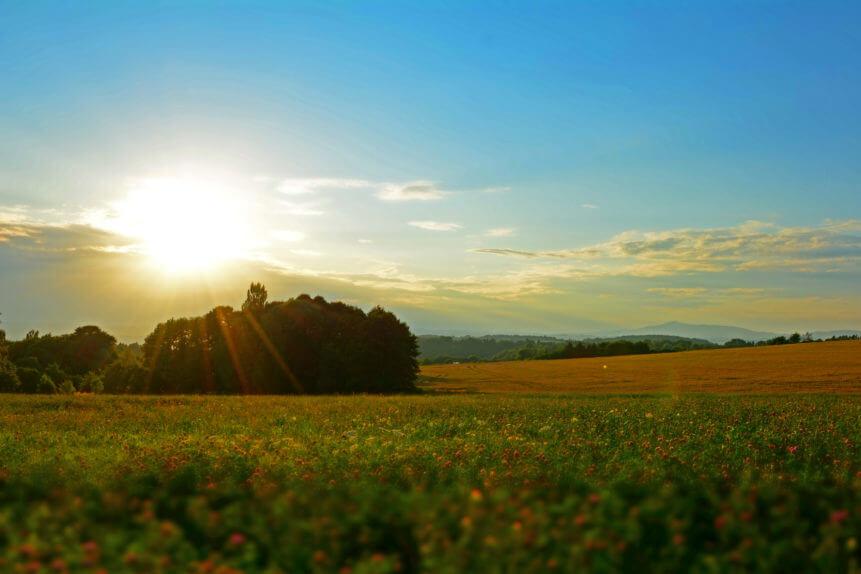 Działka niezabudowana - polana